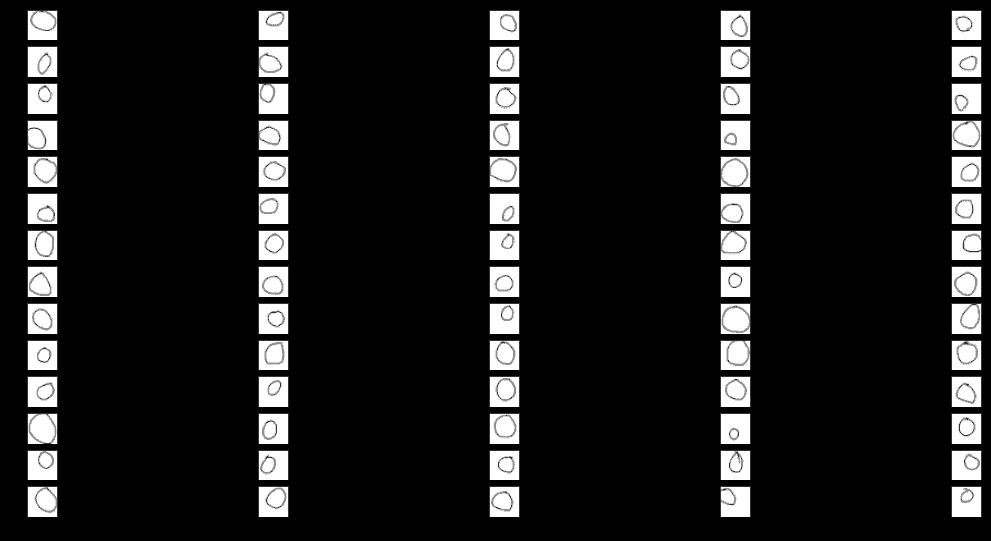 Réseau de neurones convolutif : Visualisation de l'activation intermédiaire 1